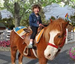 pony rides Cincinnati Dayton Ohio